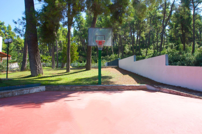 Γήπεδο του μπάσκετ