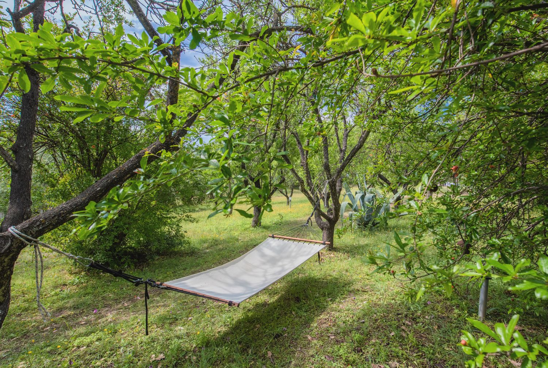 Lazy Bear Garden and Hammock