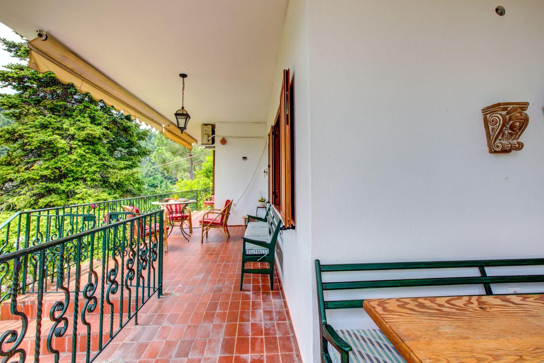 Villa Tulip Terrace