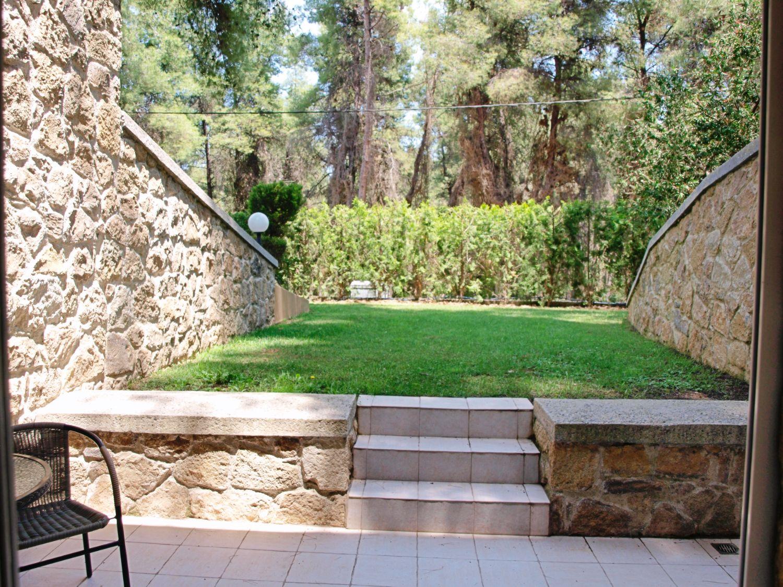Basement patio view