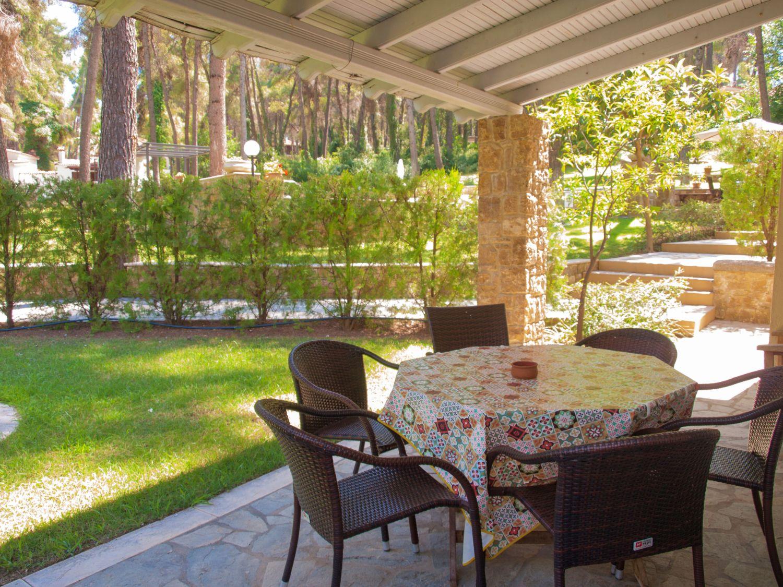 Veranda dining area and garden