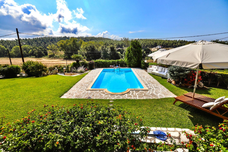 Bird's view swimming pool